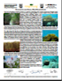 Mangrove & Coral Reef Ecosystems