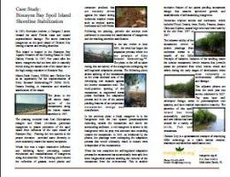 ecological importance of mangroves pdf